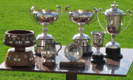 Trophies reflecting the sunshine